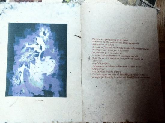 Noctu ailes jacqiueline fischer poeme objet